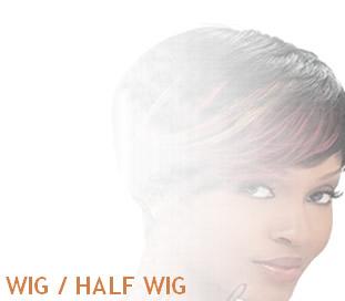 Wig / half wig